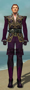Mesmer Courtly Armor M dyed front
