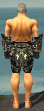 Warrior Elite Kurzick Armor M gray arms legs back