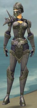 Warrior Platemail Armor F gray front