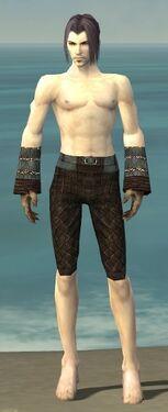 Elementalist Vabbian Armor M gray arms legs front