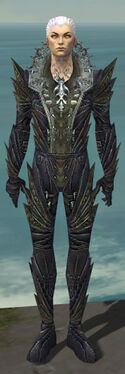 Necromancer Krytan Armor M gray front