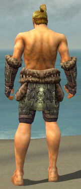 Warrior Charr Hide Armor M gray arms legs back