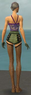 Mesmer Elite Kurzick Armor F gray arms legs back