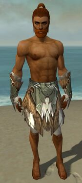 Paragon Norn Armor M gray arms legs front