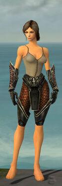 Warrior Kurzick Armor F gray arms legs front