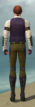Mesmer Ascalon Armor M dyed back
