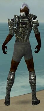 Necromancer Fanatic Armor M gray chest feet back