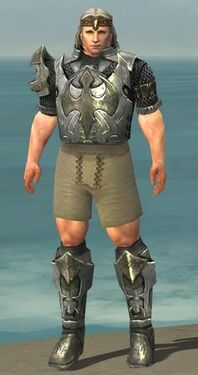 Warrior Elite Templar Armor M gray chest feet front