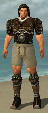 Warrior Shing Jea Armor M gray chest feet front