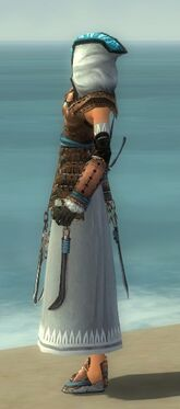 Dervish Monument Armor F dyed side