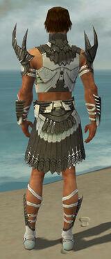 Paragon Elite Sunspear Armor M gray back