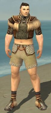 Monk Norn Armor M gray chest feet front