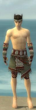 Ritualist Elite Exotic Armor M gray arms legs front