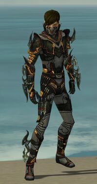 Assassin Elite Kurzick Armor M gray front