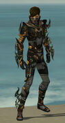 Assassin Elite Kurzick Armor M gray front