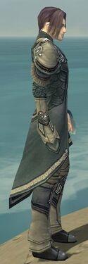 Elementalist Asuran Armor M gray side