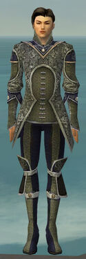 Elementalist Canthan Armor M gray front