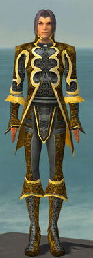 Elementalist Elite Canthan Armor M dyed front