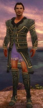 Mesmer Primeval Armor M gray chest feet front