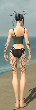 Necromancer Scar Pattern Armor F gray arms legs back