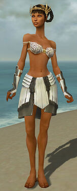 Paragon Ancient Armor F gray arms legs front