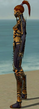 Assassin Elite Exotic Armor F dyed side