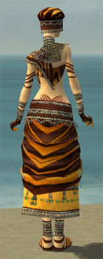 Ritualist Exotic Armor F dyed back