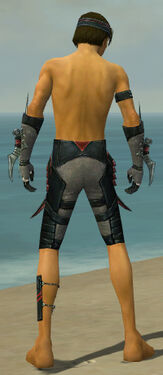 Assassin Elite Canthan Armor M gray arms legs back