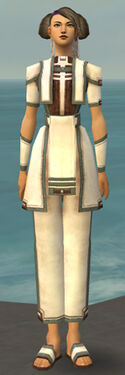 Monk Sacred Armor F gray front