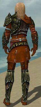 Ranger Elite Luxon Armor M dyed back
