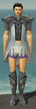 Elementalist Stoneforged Armor M gray chest feet front