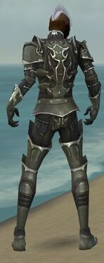 Necromancer Tyrian Armor M gray back