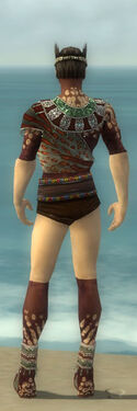 Ritualist Elite Exotic Armor M gray chest feet back