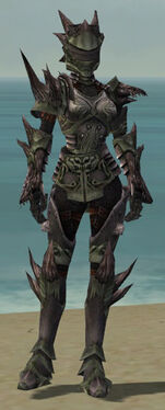 Warrior Primeval Armor F gray front