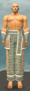 Monk Woven Armor M gray arms legs front