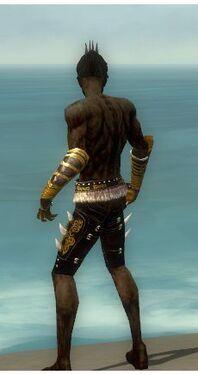 Necromancer Norn Armor M gray arms legs back