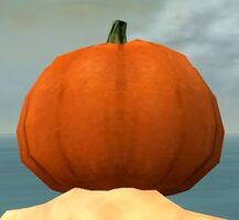 Pumpkin Crown gray back