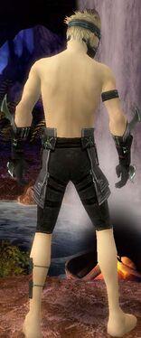 Assassin Luxon Armor M gray arms legs back