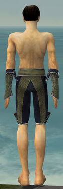 Elementalist Canthan Armor M gray arms legs back