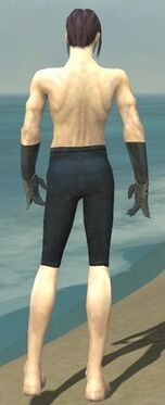 Elementalist Tyrian Armor M gray arms legs back