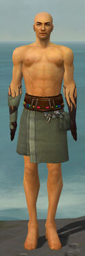 Ritualist Shing Jea Armor M gray arms legs front