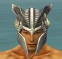 Warrior Templar Armor M gray head front