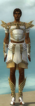 Paragon Ancient Armor M dyed front