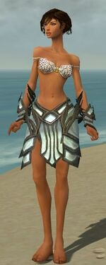 Paragon Primeval Armor F gray arms legs front