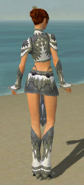 Elementalist Iceforged Armor F gray back