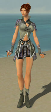 Elementalist Shing Jea Armor F gray front