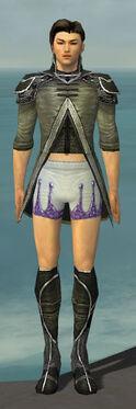 Elementalist Shing Jea Armor M gray chest feet front