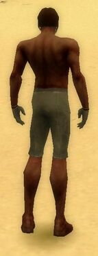 Mesmer Norn Armor M gray arms legs back