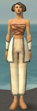 Monk Sacred Armor F gray arms legs front