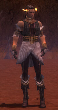 Elementalist Elite Sunspear Armor M gray front
